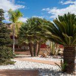 Private garden in Elche